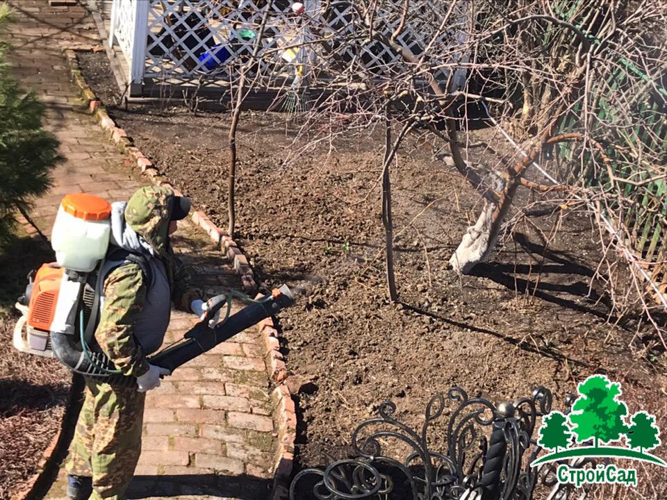 Обработки деревьев и кустарников от вредителей и болезней
